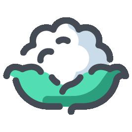 Icona cavolfiore